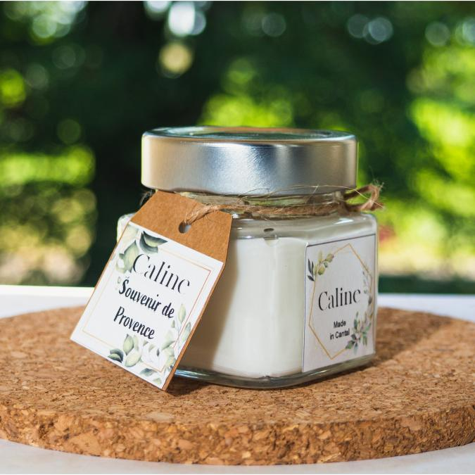 Caline - Souvenir de Provence (80g) - Bougie - Abricot, Romarin