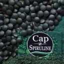 Cap Spiruline - Spiruline 160 comprimés - 100% Artisanale - 1 mois de cure - Spiruline
