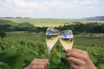 CHAMPAGNE COUVENT LEMERY - Nous cultivons nos vignes et vinifions nos raisins  à la propriété  dans notre belle vallée de Marne