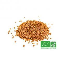 COULEURS D'ÉPICES - Coriandre graines - 200 gr - coriandre