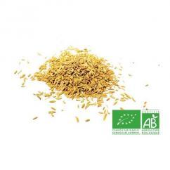 COULEURS D'ÉPICES - Fenouil graines - 200 gr - fenouil