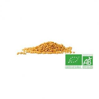 COULEURS D'ÉPICES - Moutarde jaune (graines) - 200  gr - Moutarde