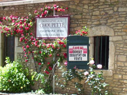Domaine de la Choupette Gutrin fils - Venez découvrir nos Grands Vins de Bourgogne !