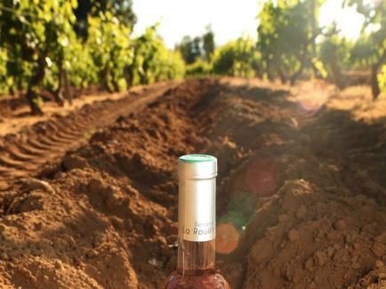 Domaine la Rouillère - Venez découvrir nos Grand Vins de Provence !