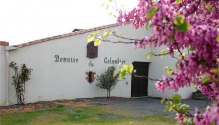 Domaine du Colombier - Venez découvrir nos vins du pays nantais !
