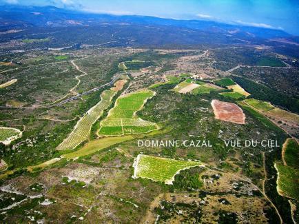 Domaine Le Cazal - Venez découvrir nos vins en Minervois !