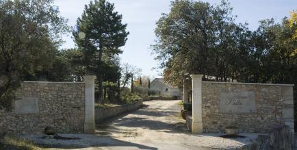 DOMAINE PIALLAT - Nous sommes Vignerons Récoltants, nous produisons des Côtes du Rhône Village Rouge, Blanc et Rosé