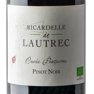 Domaine Ricardelle de Lautrec - Pinot Pontserme - 2017 - Bouteille - 0.75L