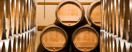 Domaine Spelty - Venez découvrir nos vins Chinon rouge, rosé et blanc !