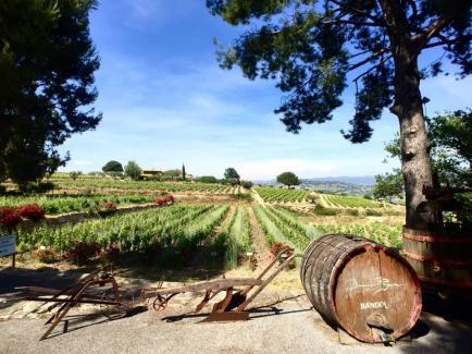 Domaines Bunan - Venez découvrir nos vins de Bandol et de Provence !