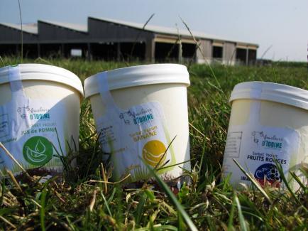 Ferme d'Idoine - Producteur laitier spécialisé dans la transformation en glace fermière,  dessert glacé et crèmerie