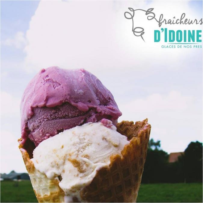Ferme d'Idoine - Glace Framboise 2,5L - glace