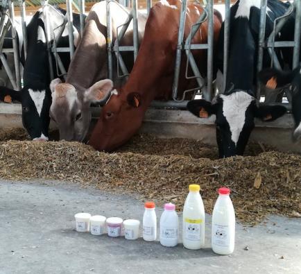 SARL Lait P'tits Loups - Fabrication de produits laitiers au lait de vache