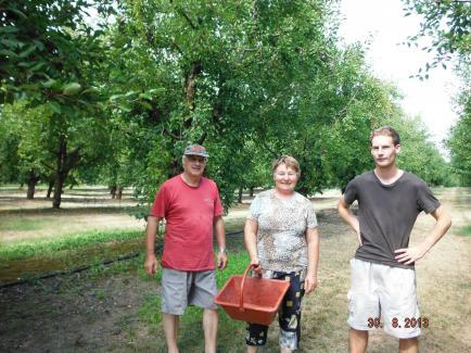 Le Verger de Loïc - Producteur de pruneaux mi cuits et dérivés autour de la prune et du pruneau