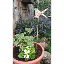 Le papier d'Emma est là - Volants - pique bambou à pot de fleur - Pique à pot de fleurs