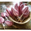 Les Ptits Menhirs - SUCETTES ARTISANALES (lot de 10) - ___Confiserie et chocolat - 0.25