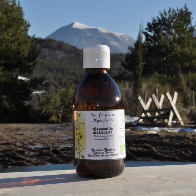 Les Sens de nos Vallées - Eau Florale / Hydrolat - Camomille matricaire - 250 ml - Hydrolat