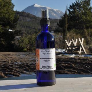 Les Sens de nos Vallées - Eau Florale / Hydrolat - Carotte sauvage - 200 ml - Hydrolat