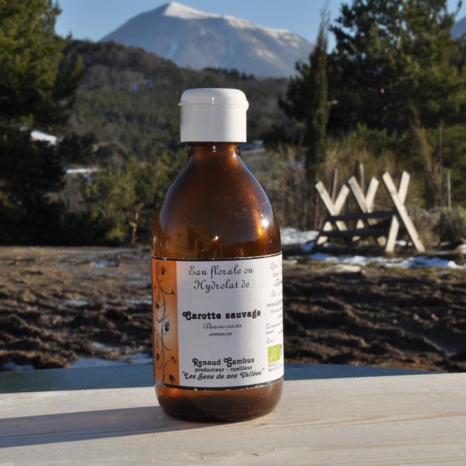 Les Sens de nos Vallées - Eau Florale / Hydrolat - Carotte sauvage - 250 ml - Hydrolat