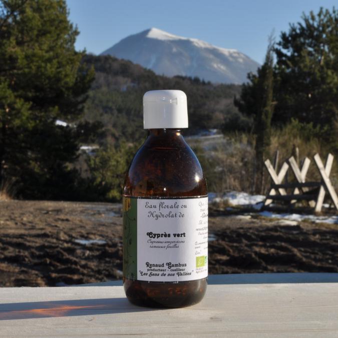 Les Sens de nos Vallées - Eau Florale / Hydrolat - Cyprés - 250 ml - Hydrolat