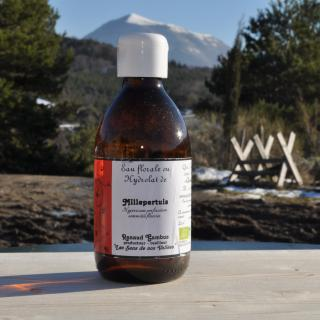 Les Sens de nos Vallées - Eau Florale / Hydrolat - Millepertuis - 250 ml - Hydrolat