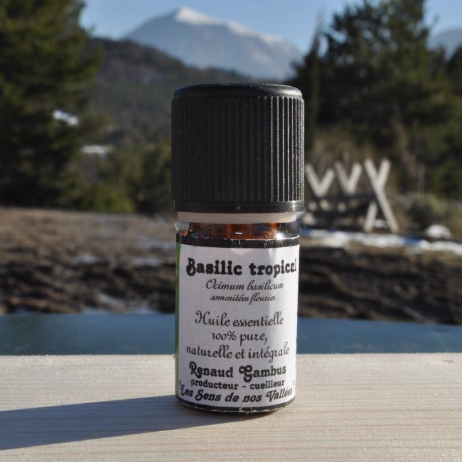 Les Sens de nos Vallées - Huile essentielle - Basilic tropical - 5 ml - Huile essentielle
