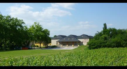 Maison André Delorme - Nous sommes l'une des seules maisons de Bourgogne à élaborer des vins et des crémants de Bourgogne.