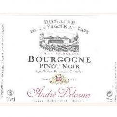 Maison André Delorme - Bourgogne Pinot Noir - rouge - 2011 - Bouteille - 0.75L