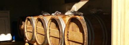 Mas Boudeissoun - Venez découvrir nos vins de pays du Vaucluse !
