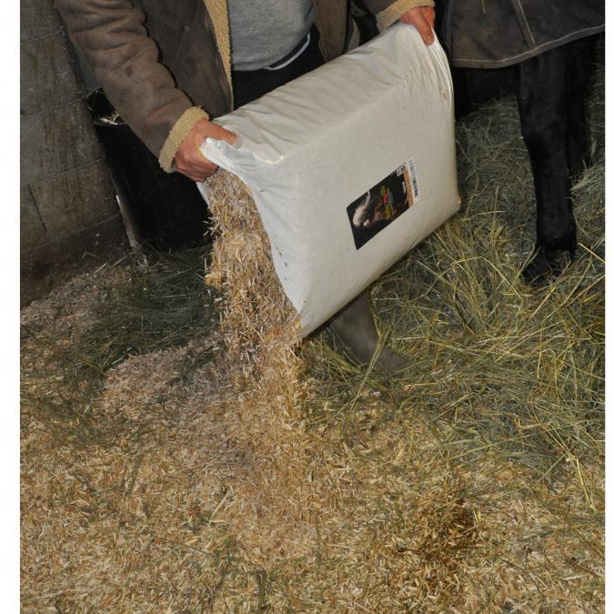 MISCANTHUS GREEN CARE - Litière pour chevaux - Copeaux de miscanthus + absorbants - 125 litres x 18 sacs [Palette] - Litière pour chevaux