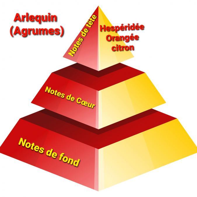Sabribrille - 110grs - Bougie - Arlequin