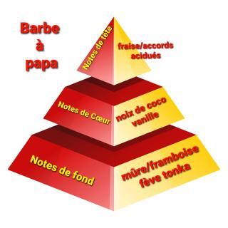 Sabribrille - Barbe à papa 8grs - Fondant (cire)