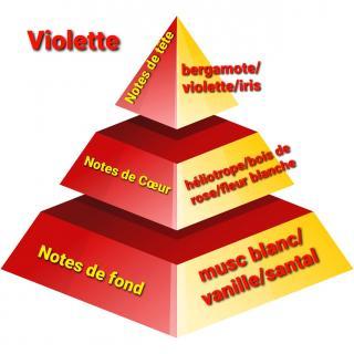 Sabribrille - Bonbon Violette 8grs - Fondant (cire)