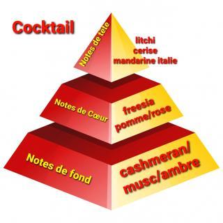 Sabribrille - Cocktail 8grs - Fondant (cire)