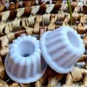 Sabribrille - Noix de coco 8grs - Fondant (cire)