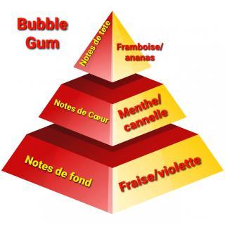 Sabribrille - Tablette Fondante Bubble gum - Fondant (cire)