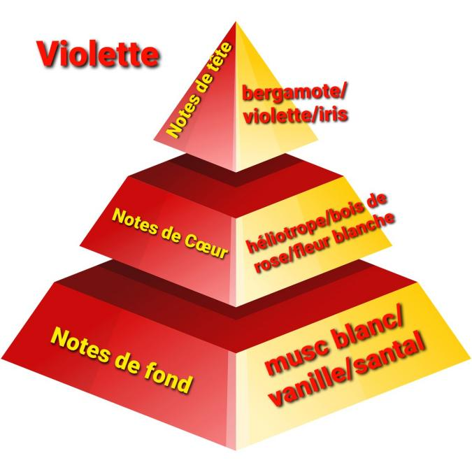 Sabribrille - Tablette Fondante Violette - Fondant (cire)