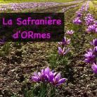 La safranière d'ORmes - Safran en pistil