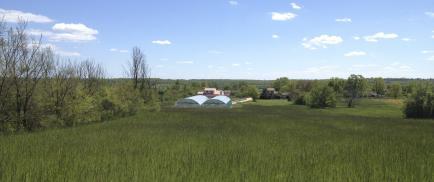 Spiruline du Pech Lugan - Producteur de spiruline paysanne crue.