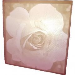 TD-PRINT-3D - Jaquette photo - ___Objet décoratif - Plastique