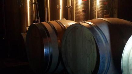 Vignoble Beigner - Venez découvrir nos vins Bergerac !