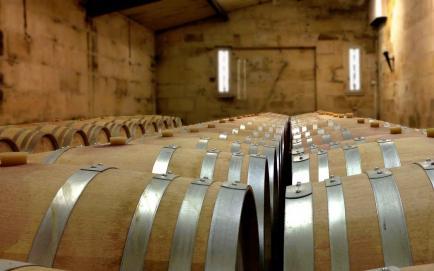 Vignobles de Langoz - Venez découvrir nos Saint-Emilion Grand Cru !